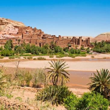 Werkgebied: Zuid-Marokko